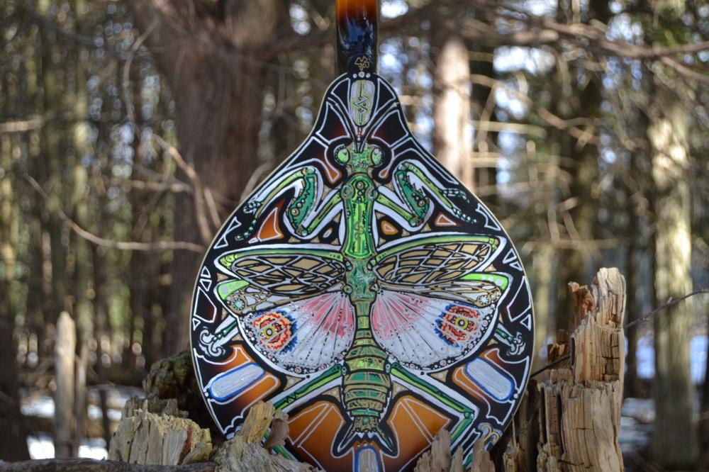 peacock n mantis (42)