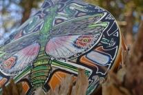 peacock n mantis (46)
